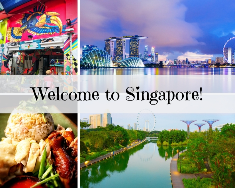 Welcome To Singapore - Cover